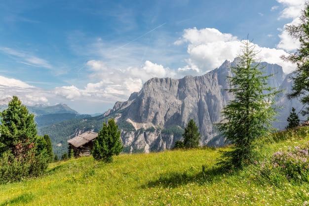 イタリアのドロミテ山脈を背景に高山の牧草地のある美しい風景。
