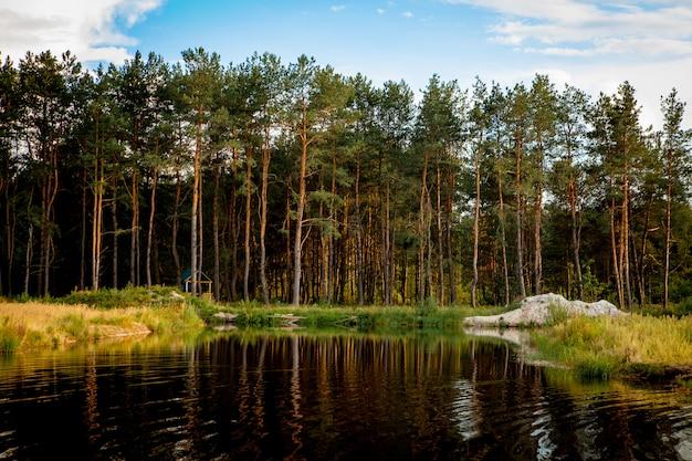 湖の近くの森の美しい風景。キャンプシーズン