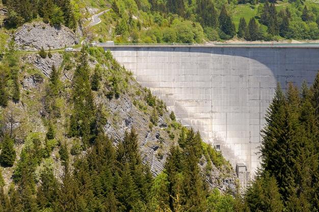 Bellissimo paesaggio con una foresta che circonda una diga a longrin, svizzera