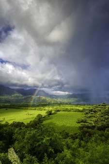 Beautiful landscape with green grass and the breathtaking view of the rainbow in the storm clouds