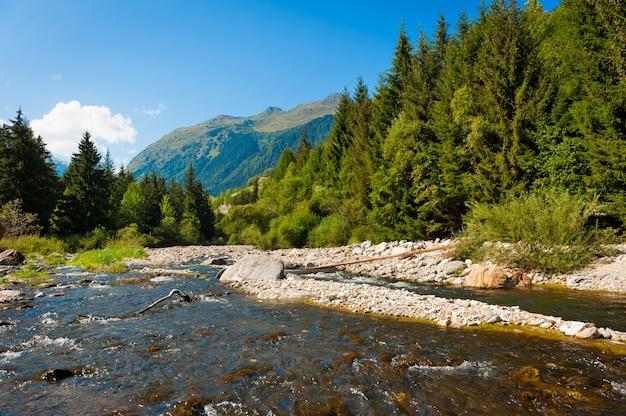 スイスアルプスの山林を流れる川のある美しい風景