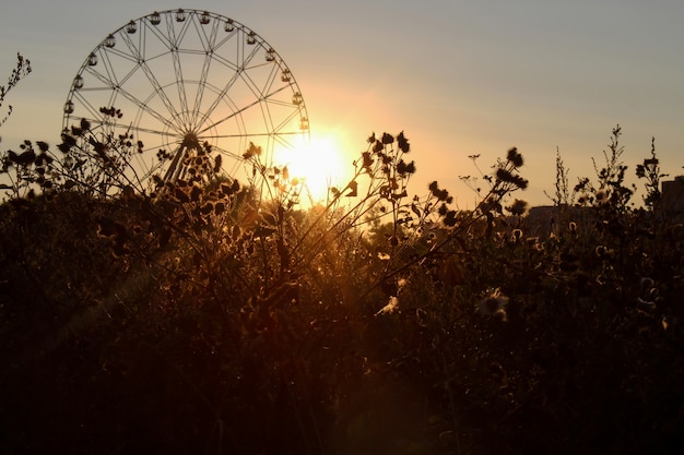 Beautiful landscape with the silhouette of a ferris wheel and sunset in europe