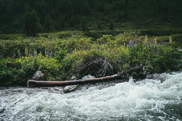 山川の澄んだ水の近くに野生の茂みと腐った木の幹のある美しい風景。マウンテンクリークの透明な水の上にある野生の植物のカラフルな風景。野生の山の植物。