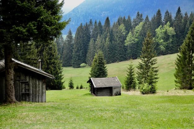 Красивый пейзаж с деревянными домиками и зелеными деревьями