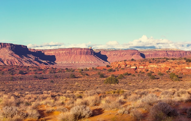 Beautiful landscapes of the american desert