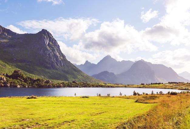 ノルウェー北部のロフォーテン諸島の美しい風景。夏のシーズン。