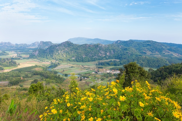 Beautiful landscapes in phu pa poh, province loei, thailand.