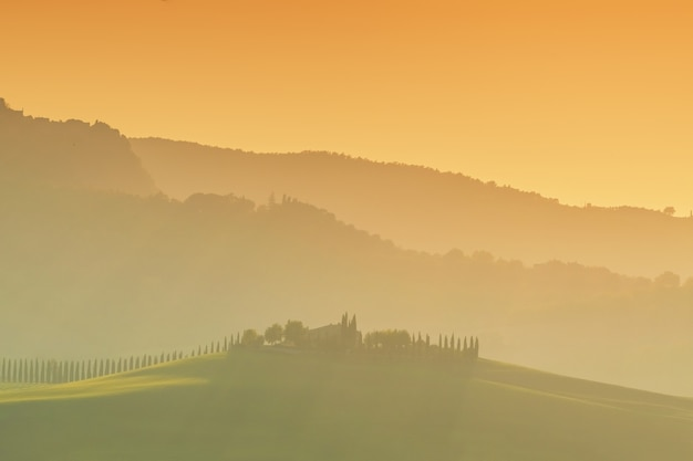 Beautiful landscapes of tuscany with hills, vineyards and cypress trees from the road
