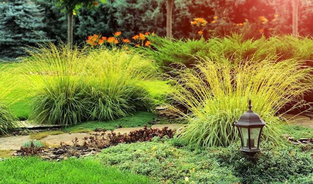 美しい植物や花のある美しい造園