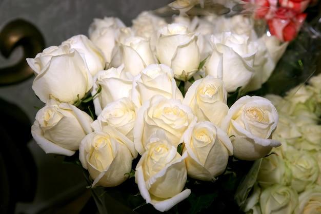 흰 장미의 아름다운 큰 꽃다발