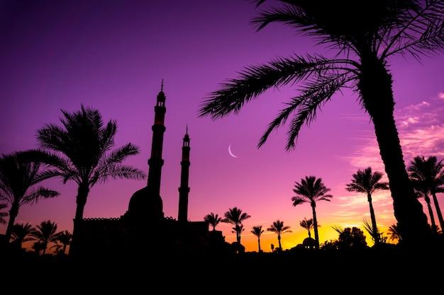 Beautiful large islamic mosque at sunset