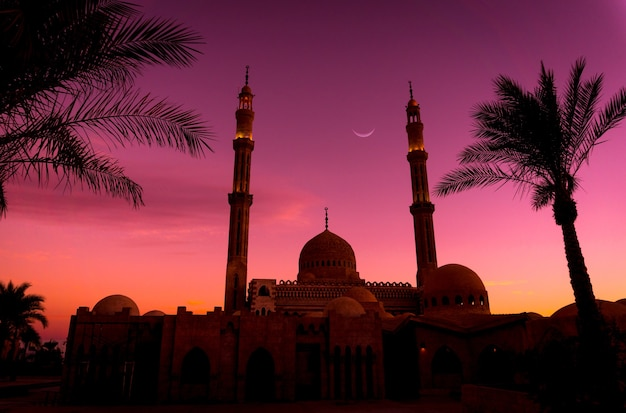Beautiful large islamic mosque at sunset