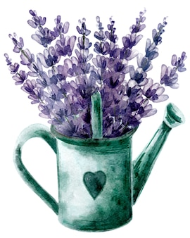 마음으로 물을 수 있는 아름다운 라벤더 꽃다발. 프로방스 스타일의 손으로 그린 그림