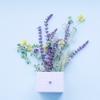Beautiful lavender flowers in the polka dot box over the blue background