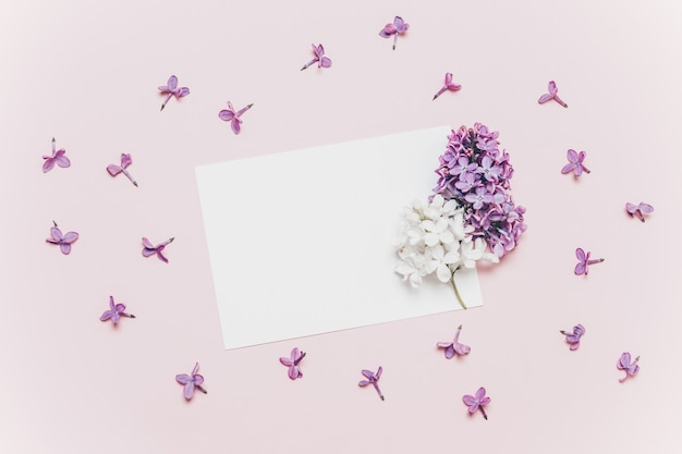 Beautiful lilac branch and mockup white greeting card on pink background.