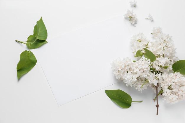 아름 다운 라일락 꽃과 흰색 바탕에 빈 카드