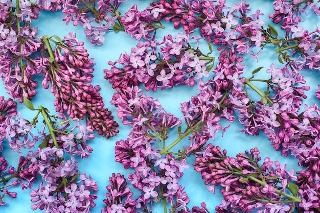 分離された美しいライラックの花 Premium写真