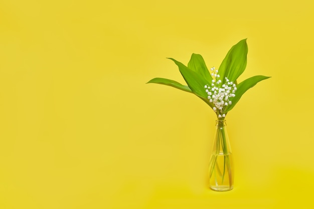 Beautiful lilies of the valley on a yellow with place for text.