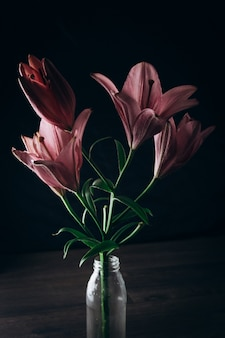 Beautiful lily flower, flavii variety, on a black wooden background.