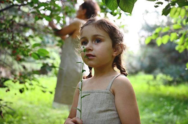 果樹園でさくらんぼを摘む母親を背景に野花の香りを楽しむ美少女