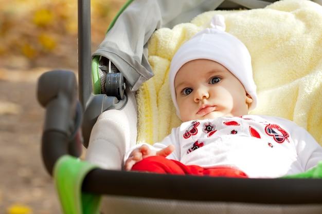 공원에서 유모차에 아름 다운 소녀