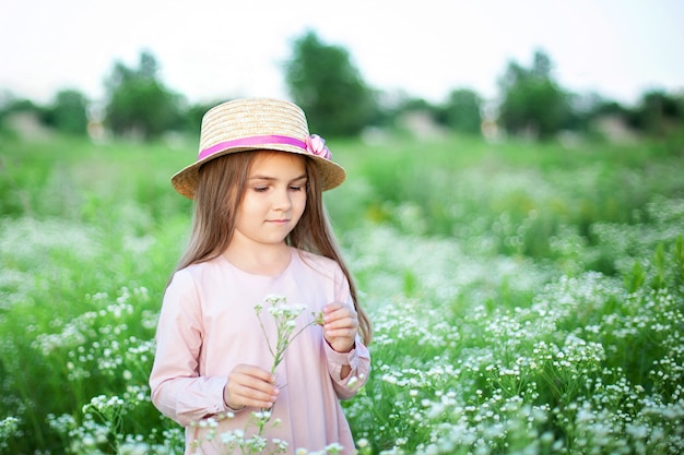 Beautiful little smiling girl in pink dress and straw hat in field of daisies.  cute child in field of blooming chamomile in summer.
