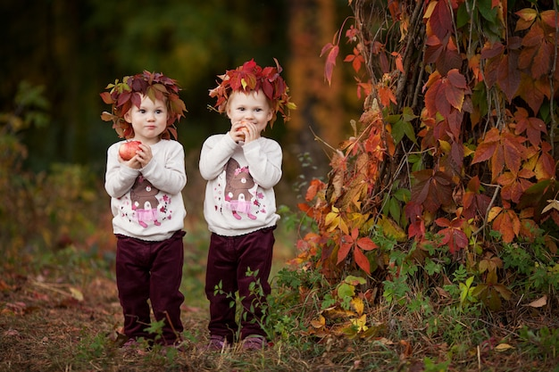 Beautiful little twin girls  holding apples in the autumn garden.  little girls playing with apples. toddler eating fruits at fall harvest. healthy nutrition.  autumn activities for children. hallowee