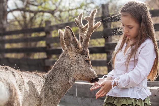 日差しの中で動物のノロジカを抱き締める美しい小さな女性