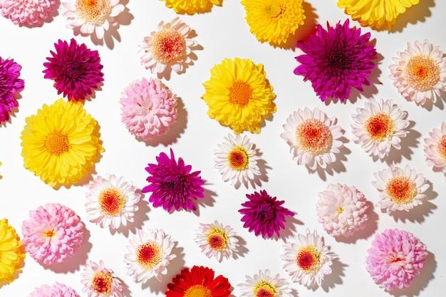 鮮やかな花のつぼみでできた美しい