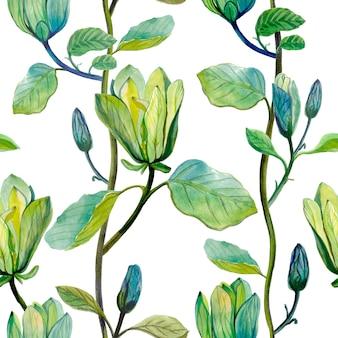 Beautiful magnolia flowers watercolor hand drawn