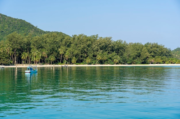 Beautiful malibu bay with palm trees and boats. tropical beach and sea water on the island koh phangan, thailand