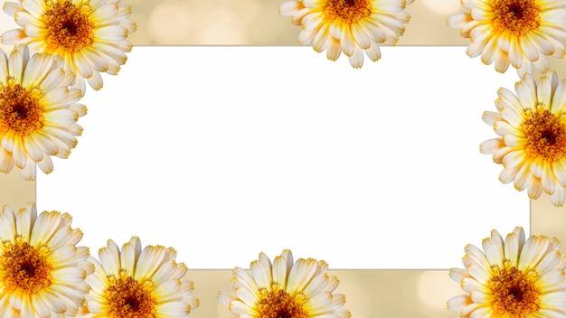 Beautiful marigold flower on yellow blurred background. festive