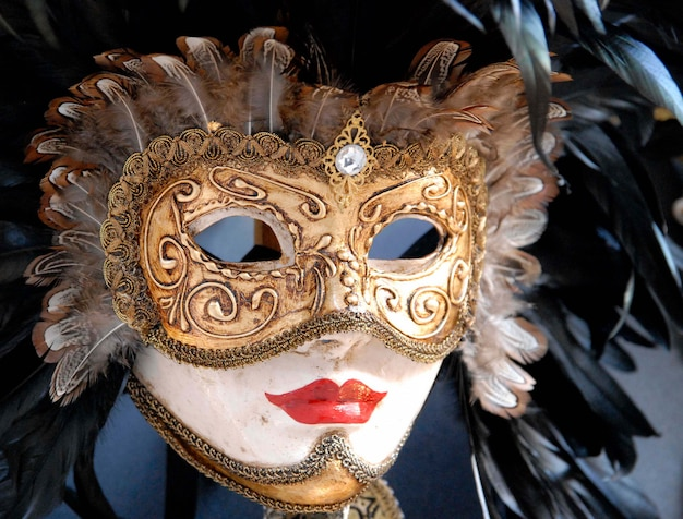 Beautiful mask of the carnival of venice