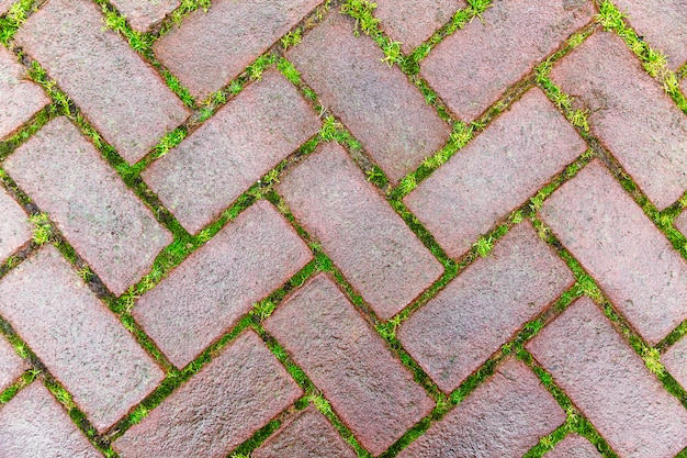 Beautiful masonry cobblestone pavement with grass sprouted in the seams. close-up. . copyspace.