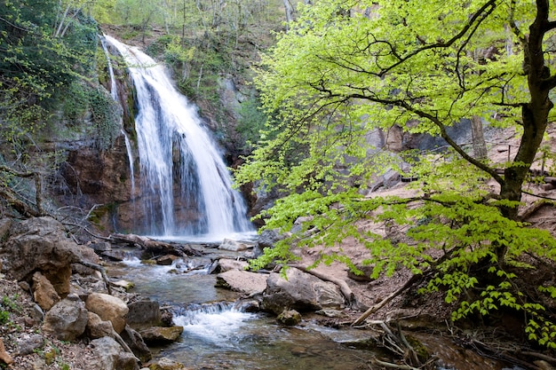 Beautiful mesmerizing landscape of not a large waterfall and river in the mountains of sunny spring day. concept of pure eco-friendly nature Premium Photo