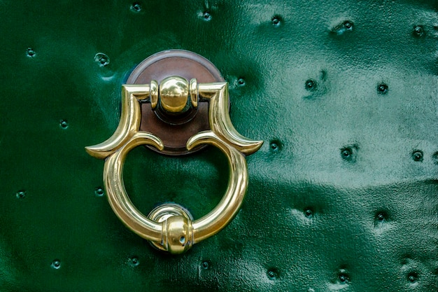 Beautiful metal handle on a green front door. close-up.