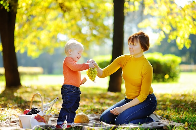 Beautiful middle aged woman and her adorable little grandson having a picnic in sunny park