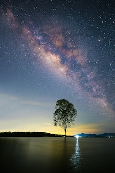 The beautiful milky way above a tree standing in the water. the beautiful stars in thailand