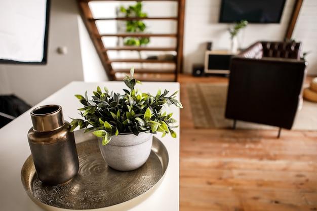 ビニールプレーヤー、本、テレビ、観葉植物、ハンモックなどのインテリアアイテムを備えた美しいモダンなキッチンとリビングルーム。ホームコンフォートコンセプト