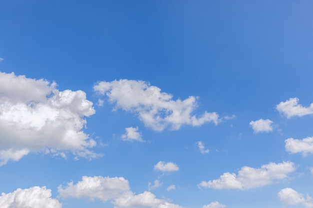 緑豊かな白い雲と美しい朝の青い空