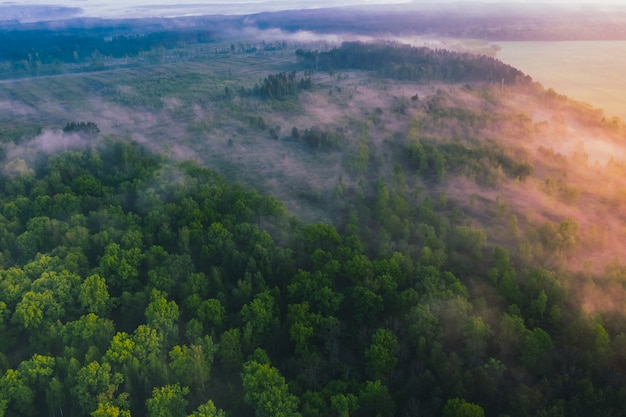 Beautiful morning landscape with fog view from drone