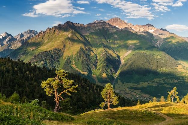 높은 산과 푸른 하늘과 햇볕에 쬐 인 나무와 아름다운 아침 풍경