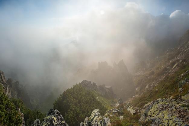 昇る太陽、景観に照らされた山々の美しい朝の霧