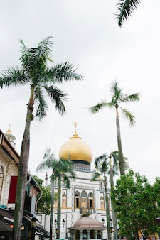 Beautiful mosque and palm tree in singapore