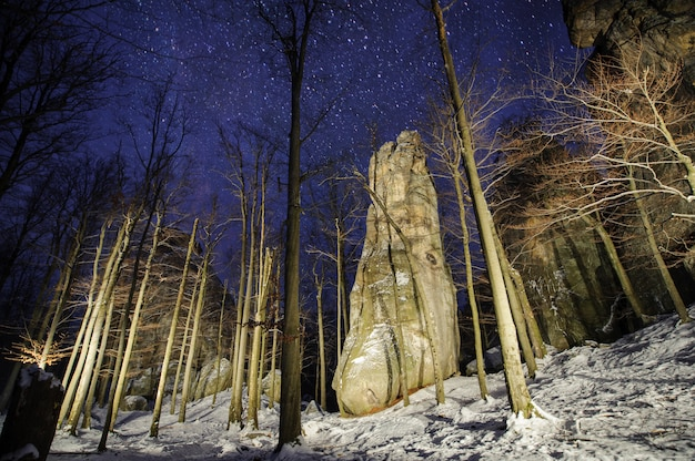 Beautiful mountain forest and big light painted rocky boulders