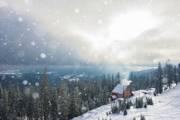 木々と太陽の山々に対して晴れた暖かい日に美しい山林の風景。山での旅行とアウトドアレクリエーションの概念