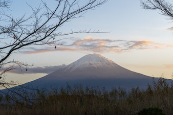 Beautiful Mountain Fuji at Lake kawaguchiko in japan on autumn season