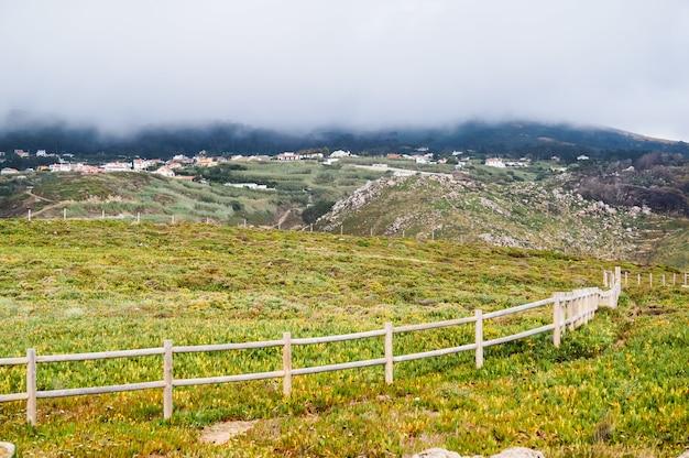 緑の植生と美しい山の丘