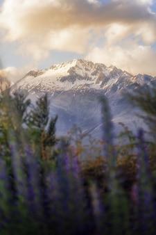 뉴질랜드의 아름다운 산