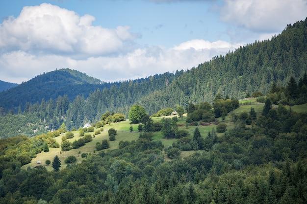 Красивый горный пейзаж и склон, освещенный солнцем